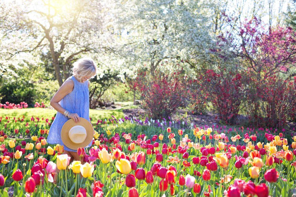 jardin aménagé